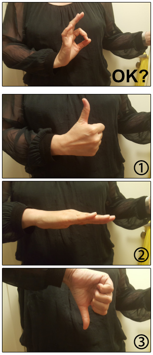 Fig. 2: OK Check-In Hand-Signs